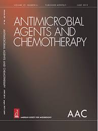 Multipurpose prevention approaches with antiretroviral-based formulations